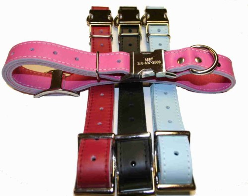 Engraved Buckle Leather ID Dog Collar adjusts 16 to 19 inches