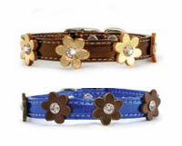 Flower Power Collars