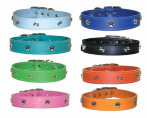 Leather Collar 1 inch wide