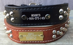 Leather Collar With Studs 1-1/2 in wide with Name Plate