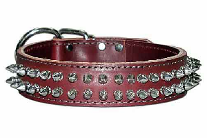 Leather Dog Collar with Spikes 1-1/2 inch