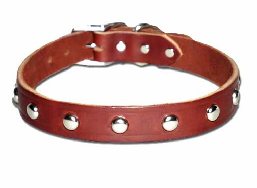 Leather Dog Collar with Studs 1 Inch Wide
