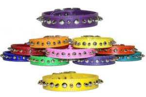 OmniPet Leather Spike and Stud Collars For Medium Size Dogs