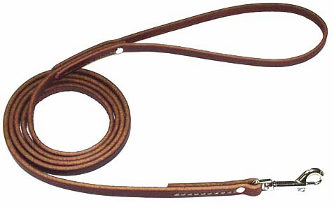 <BIG>Matching Leather Dog Leads</BIG>
