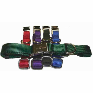 Personalized Metal Buckle Nylon Collars (14 to 19 inches)