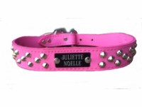 Pink Leather Collar with Studs and Name Plate