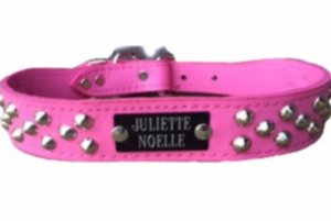 Pink Leather Collar with Studs with Name Plate