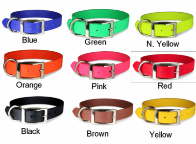 Regular Zeta 1 inch wide collar