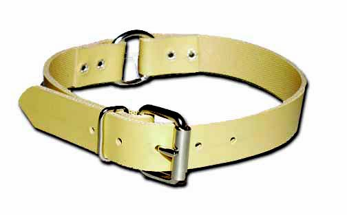 Ring-in-Center Perma Dog Collar 1 Inch Wide