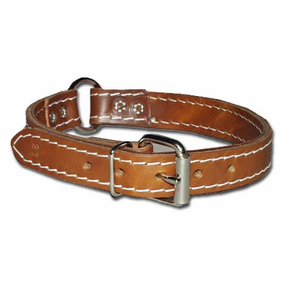 Ring-in-Center Two-Ply Leather Dog Collar 3/4 Inch Wide