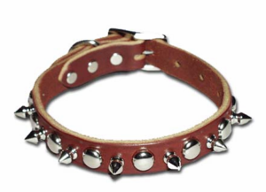 Spiked And Stud Leather Dog Collar 1 inch Wide