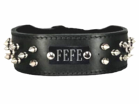 Spiked Collar with Name Plate Space
