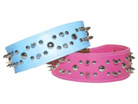 Spikes and Studs Leather Collar 2 inch