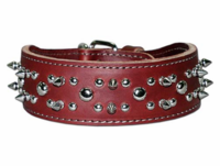 Spikes and Studs Leather Dog  Collar