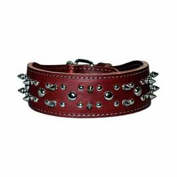 Spikes and Studs  Leather Dog Collar 2 inch
