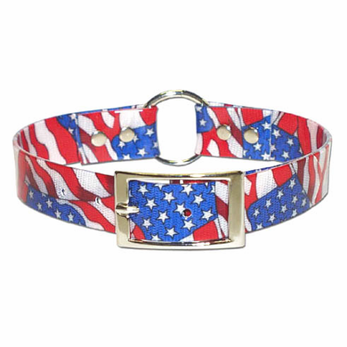 Stars and Stripes Dog Collar 1 inch wide