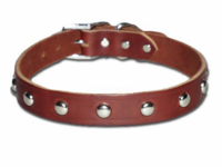 Studded Dog Collar 3/4 Inch Wide