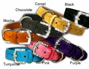 Suded Leather Collar with Rhinestone buckle 1 inch wide
