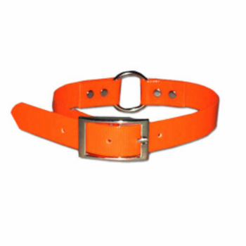 SunGlo Dog Collar Ring-In-Center 3/4 in. wide