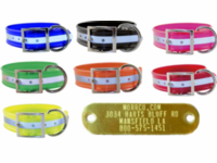 Wide Reflective Dog Collar with Name Plate