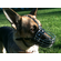 Heavy Duty Wire Basket Dog Muzzles