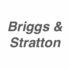 Briggs & Stratton Small Engine Starters