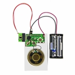 Custom Tune Digital Electronic Module Only - Without A Box