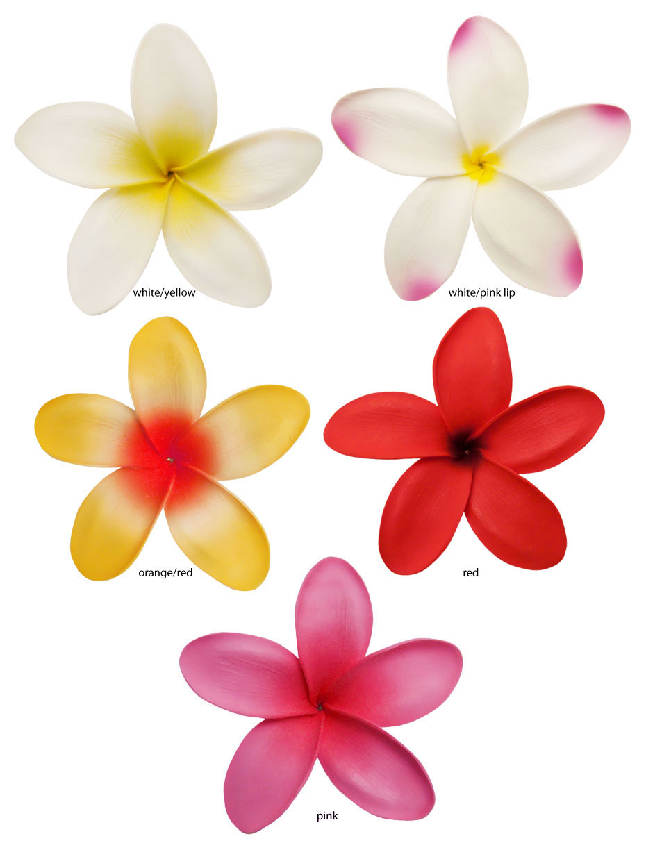 5 Hawaiian Flower Hair Clip Available In 5 Colors