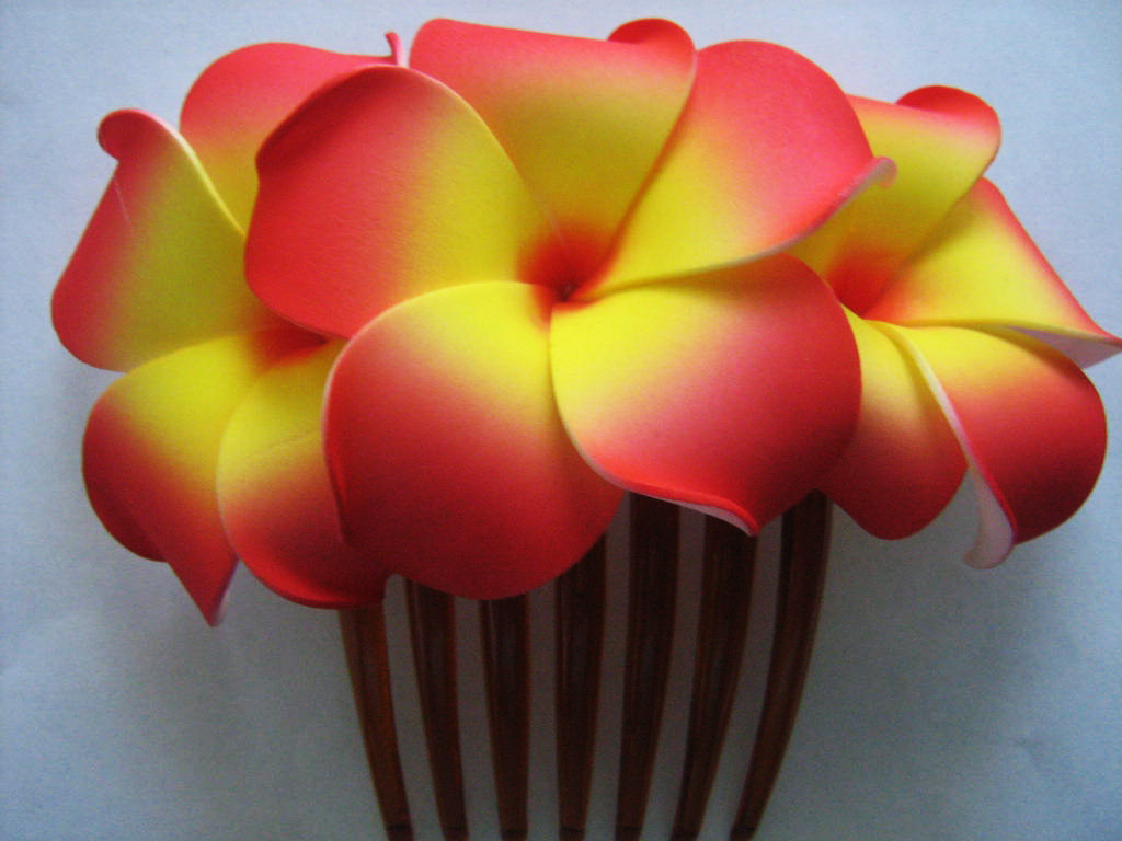 5 Hawaiian Flower Hair Combs