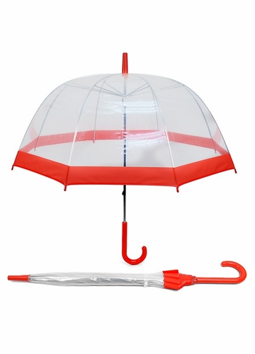 Clear Umbrella with Colorful Trim