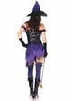 Crafty Witch Costume inset 1