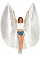 Metallic Pleated Wings  inset 1