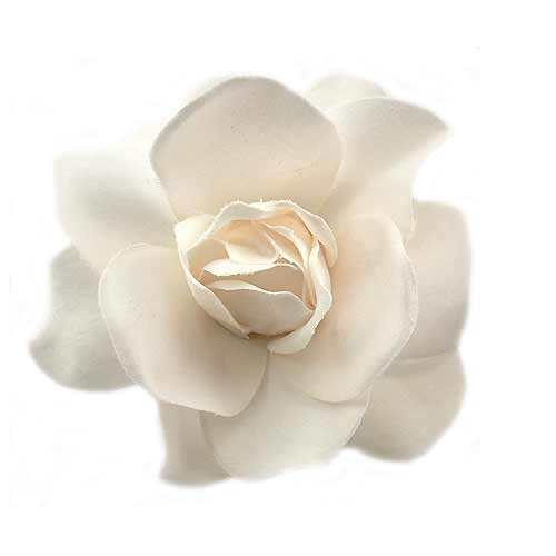 White flower hair clips our best selling pale cream gardenia hair clip 650 48 off mightylinksfo