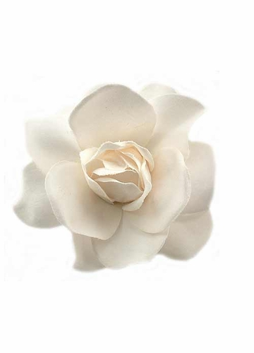 Pale Cream Gardenia Hair Clip