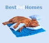 Best New Pet Homes