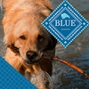 Blue Buffalo Pet Food for Dogs