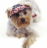 Celebrate Labor Day at NaturalPets