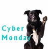 Cyber Monday Pet Deals, Cyber Monday Pet Sale