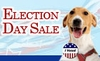 Election Day Sale