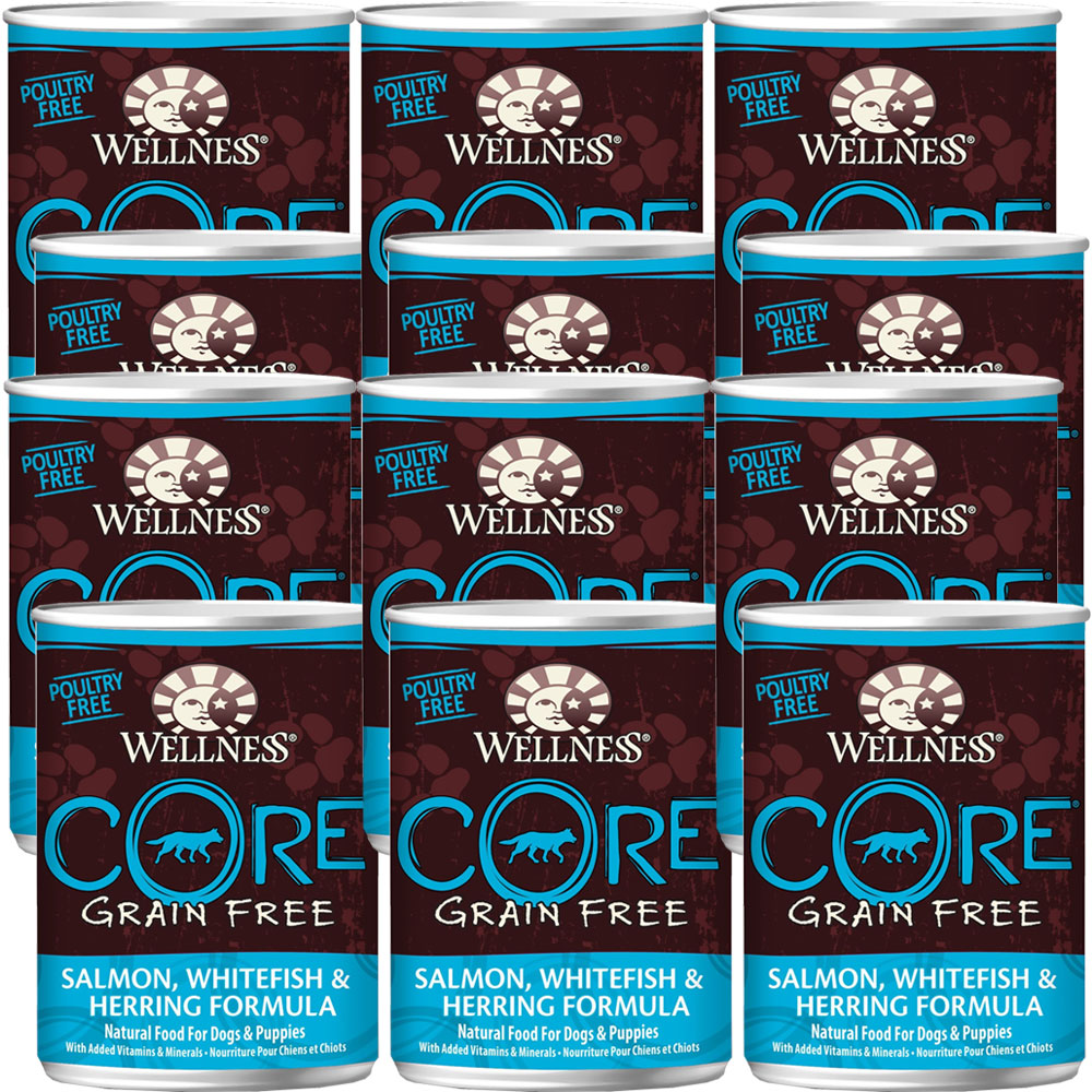 Wellness Core Grain Free Canned Adult Dog Food Salmon