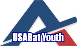 4 Anderson Youth USA Bats