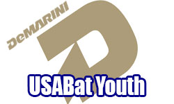 4 DeMarini Youth USA Bats