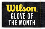 Wilson Glove of the Month Gloves