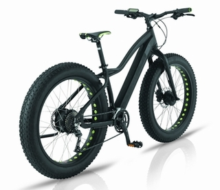 Easy Motion EVO Big Bud Pro - electric fat bike