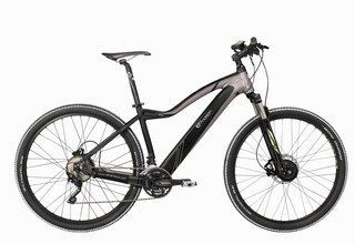 "Easy Motion EVO Snow 29"" PRO - AWD bike"