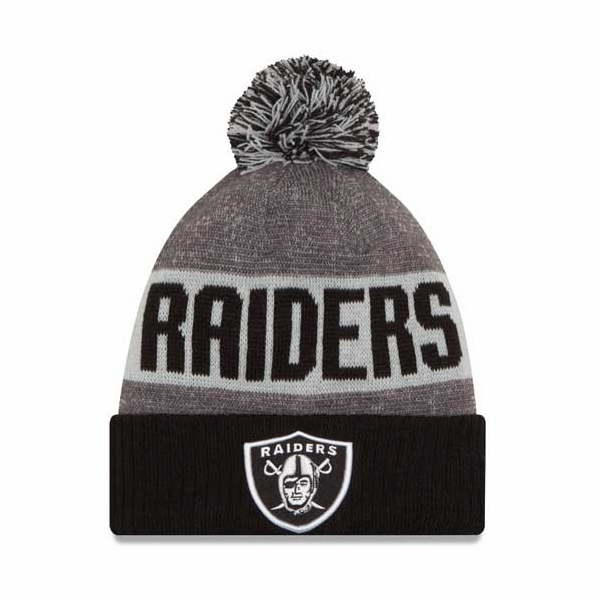 Raiders New Era 2016 Youth Official Sport Knit