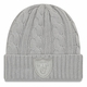 Raiders New Era Cashmere Grey Team Patch Knit