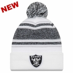 Raiders New Era Team Frost Knit