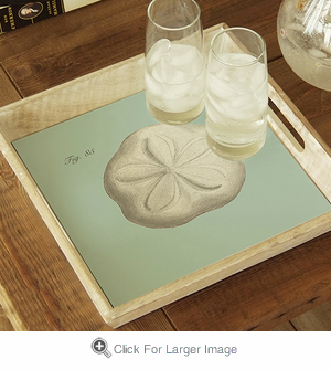 Sand Dollar Tray - Click to enlarge