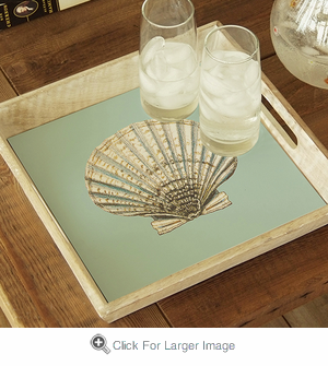 Scallop Shell Tray - Click to enlarge